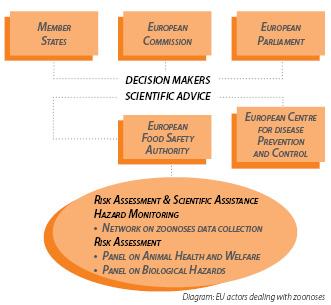 EU actors dealing with zoonoses