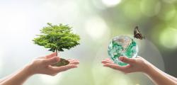 environmental_1.png