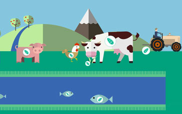 Interactive infographic: How can we reduce the use of antimicrobials in food producing animals?